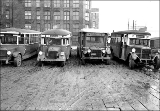 Buses, probably belonging to the Seattle Municipal Railway Co., n.d.