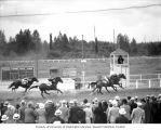 Four race horses at full gallop on a track crossing the finish line while a crowd watches,...