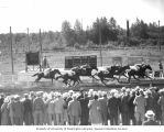 Six race horses at full gallop on a track approach the finish line while a crowd watches,...