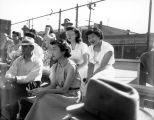 Asian American men and women sitting in the bleachers watching a sport, ca. 1950's
