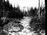 Fish catch, Sol Duc River, ca. 1922