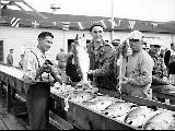 Fishermen with their catch, 1948