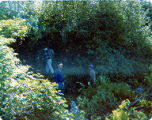 Three unidentified men walking through bushes, ca. 1980