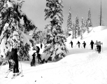 Cross country skiers at Mount Rainier National Park, n.d.