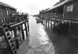 Docks with vats at Clifton near defunct cannery, 1979-1980