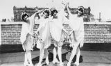 Abbott Dancers Esther McMurtrie, May Hass, Rene Grage, and Mary Lou Brennen in Mikado of Jazz...