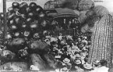 William Howard Taft on railroad car in front of a crowd surrounded by oversized vegetables, ca....
