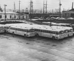 Buses at a base, circa 1950s-1960s