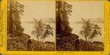 Columbia River and Castle Rock viewed through the forest, Oregon, 1867