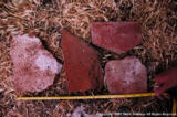 Roof tiles from water pump trench