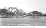 Three Japanese seal poaching schooners in harbor, Unalaska, ca. 1911