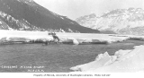 Dog sled team and driver preparing to cross the Nizina River, ca. 1912