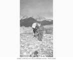 Prospector with pack horse, ca. 1912