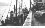 Loading cargo onto the cannery tender RED ROVER, Port Moller, ca. 1912