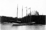 Schooner DEFIANCE after launch in the Hoquiam River, 1897