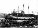 Schooner DEFIANCE being readied for launch, at Hoquiam, 1897