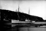 Steam schooner COSMOPOLIS in the Hoquiam River, n.d.