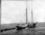 Schooner MAID OF ORLEANS, Bering Sea, n.d.