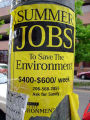 Flyer advertising summer jobs