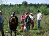 Students from UW Bothell ecological methods class (BES 316) analyzing vegetation in the wetlands