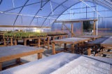 Plant propagation benches inside greenhouse during wetlands restoration