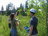 Students measuring plant water status in wetlands