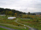 Plant propagation and storage facilities at northwest corner of wetlands