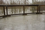Flood waters on top of the end of the boardwalk