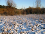 Snow on wetland buffer and floodplain