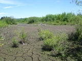 Lake Truly mostly dried up