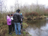 UW Bothell students studying stream ecology