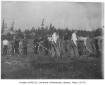 1909 Campus Day showing students working in field, University of Washington