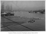 Crew rowing near sailing ships on Lake Union, University of Washington, 1940