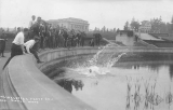 1913 Campus Day showing a student getting tossed into Frosh Pond, University of Washington