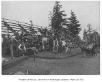 1906 Campus Day showing students engaged in construction project, University of Washington