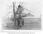 Edmond Meany and Ludwig Metzger near the scion of the Washington elm tree, in front of Lewis Hall,...
