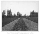 Campus road past Science Hall (now Parrington Hall), University of Washington, n.d.