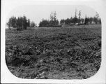Cleared field with construction support buildings on the site of the University of Washington...