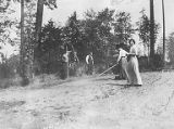 Young men and women hoeing large field, Campus Days at University of Washington, 1913