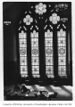 Suzzallo Library stained glass windows, University of Washington, n.d.