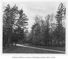 Boulevard through arboretum, University of Washington, November 1, 1955