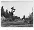 Azalea Way, Arboretum, University of Washington, April 6, 1949