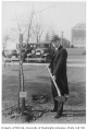 Belgian representative planting tree in Consulate Grove, University of Washington, 1932