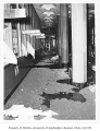 Bomb damage to Administration Building (now Gerberding Hall), University of Washington, June 29,...