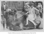 1926 Campus Day showing students with camel, University of Washington