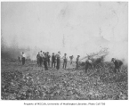 1907 Campus Day showing students clearing field, University of Washington