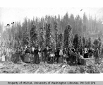 Hop pickers in field, Puyallup, 1892