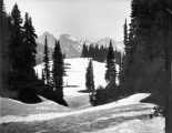 Paradise Park looking south, near Mount Rainier, July 30, 1896