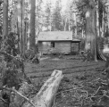 Deserted cabin, Snoqualmie Pass, October 15, 1896