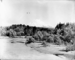 Mount Rainier from railroad bridge over Puyallup River, near Sumner, July 5, 1901